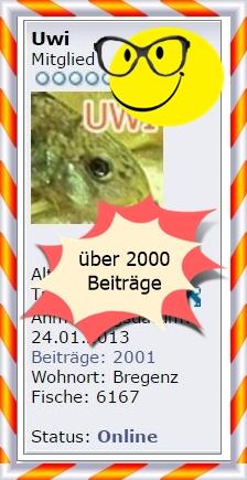 http://uwe.edatasystem.com/aquarium2016/2001beitrag.JPG